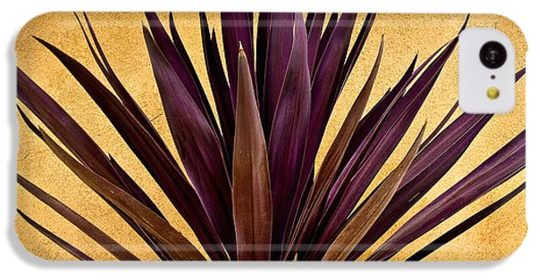 Desert iPhone 5c Case -  Purple Giant Dracaena Santa Fe by John Hansen