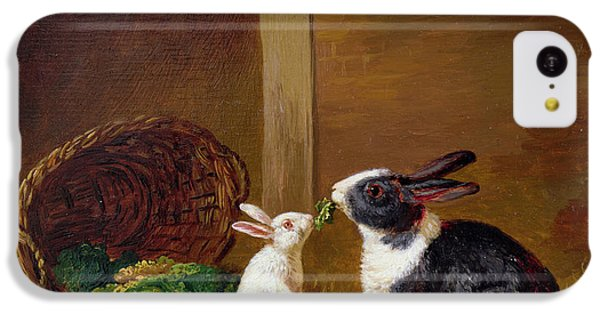 Two Rabbits IPhone 5c Case by H Baert