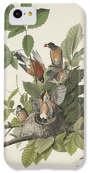 American Robin IPhone 5c Case by Rob Dreyer