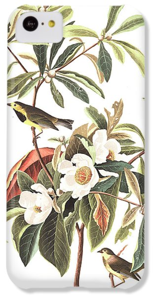 Bachman's Warbler  IPhone 5c Case by John James Audubon