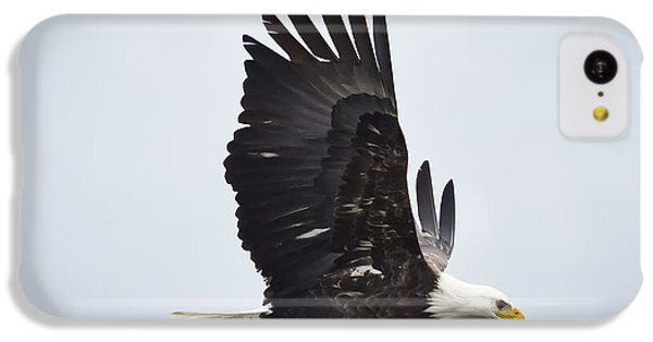 Bald Eagle IPhone 5c Case