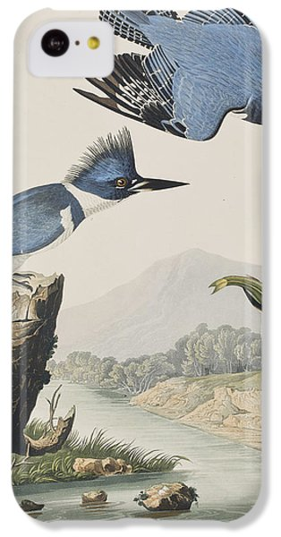 Belted Kingfisher IPhone 5c Case