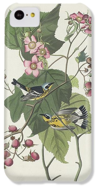 Black And Yellow Warbler IPhone 5c Case by Rob Dreyer