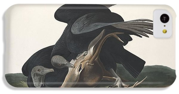 Black Vulture IPhone 5c Case by Rob Dreyer