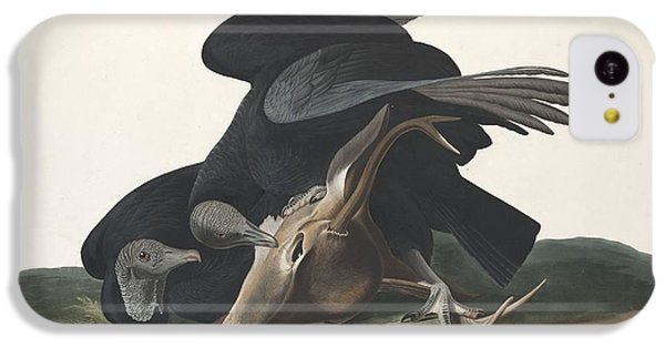 Black Vulture IPhone 5c Case by Anton Oreshkin