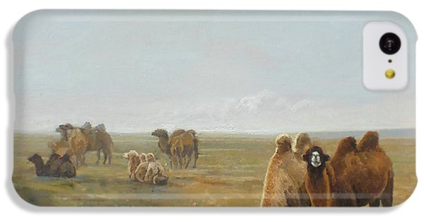 Camels Along The River IPhone 5c Case