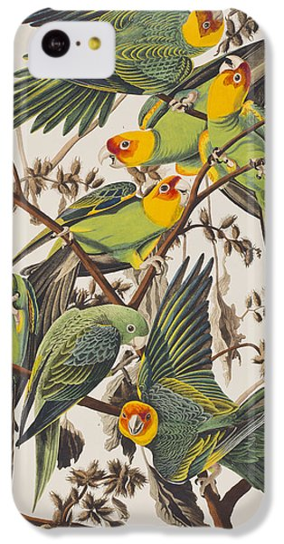 Carolina Parrot IPhone 5c Case