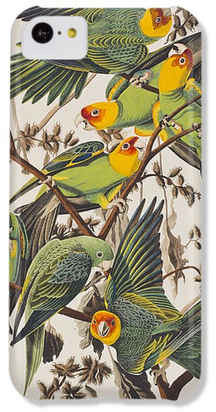 Carolina Parrot IPhone 5c Case by John James Audubon