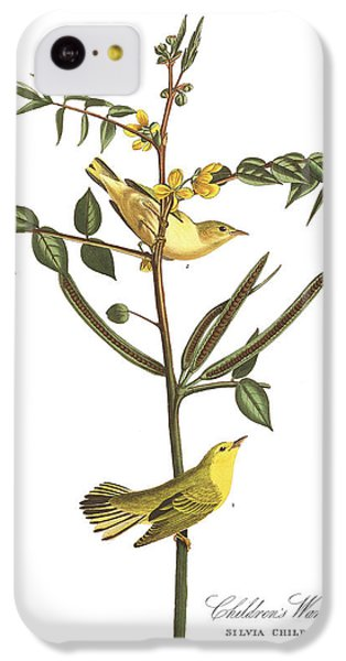 Children's Warbler IPhone 5c Case by John James Audubon