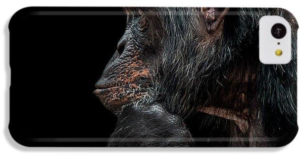 Chimpanzee iPhone 5c Case - Contemplation  by Paul Neville