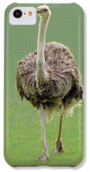 Emu IPhone 5c Case by Ellen Henneke