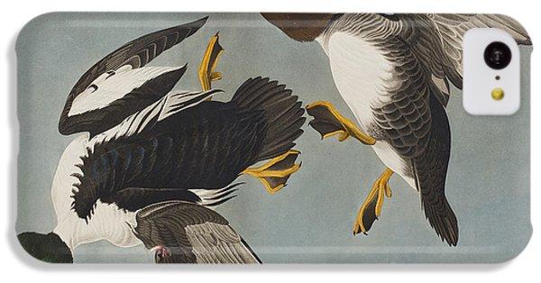 Golden-eye Duck  IPhone 5c Case by John James Audubon
