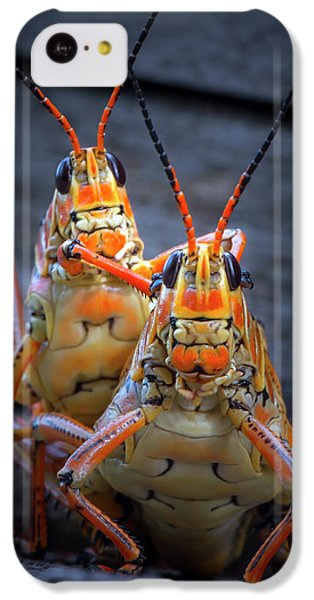 Grasshoppers In Love IPhone 5c Case by Mark Andrew Thomas