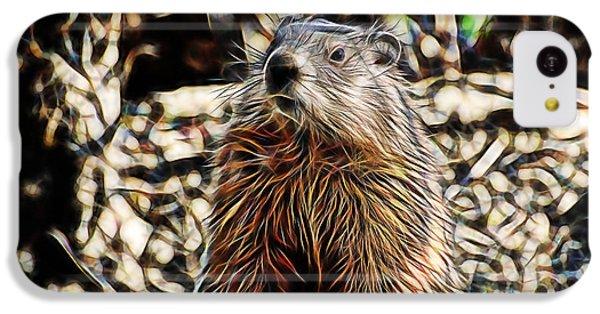 Groundhog iPhone 5c Case - Groundhog by Marvin Blaine