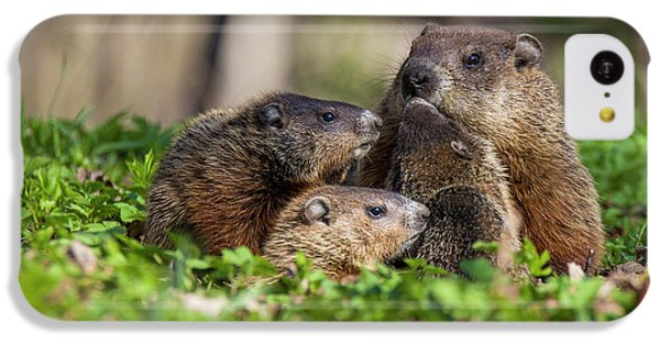 Happy Family IPhone 5c Case by Mircea Costina Photography