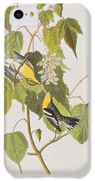 Hemlock Warbler IPhone 5c Case