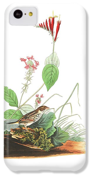 Henslow's Bunting  IPhone 5c Case by John James Audubon