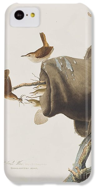 House Wren IPhone 5c Case