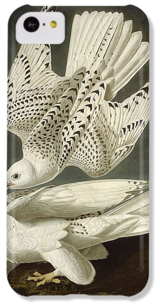 Iceland Or Jer Falcon IPhone 5c Case by Dreyer Wildlife Print Collections