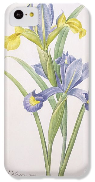 Iris Xiphium IPhone 5c Case