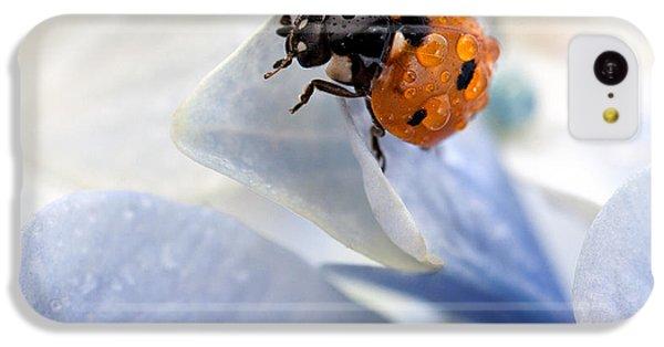 Ladybug IPhone 5c Case by Nailia Schwarz