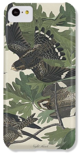 Night Hawk IPhone 5c Case by Dreyer Wildlife Print Collections