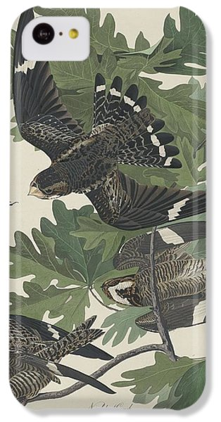Night Hawk IPhone 5c Case by Anton Oreshkin