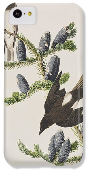 Flycatcher iPhone 5c Case - Olive Sided Flycatcher by John James Audubon