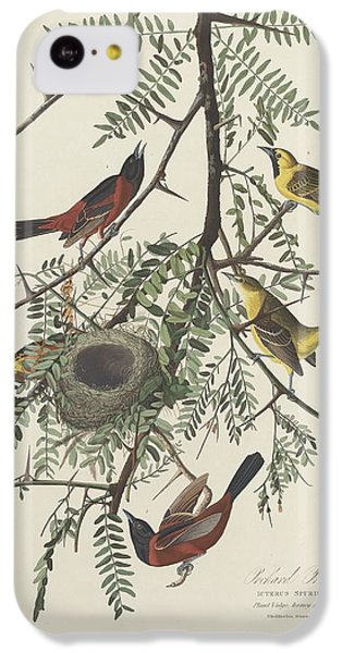 Orchard Oriole IPhone 5c Case by Dreyer Wildlife Print Collections