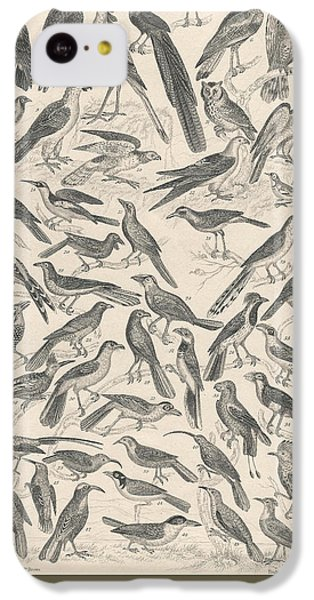 Condor iPhone 5c Case - Ornithology by Dreyer Wildlife Print Collections