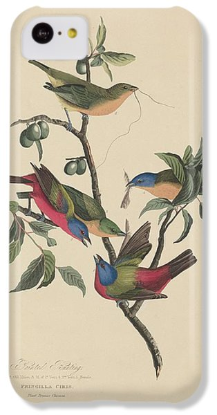 Painted Bunting IPhone 5c Case by Rob Dreyer