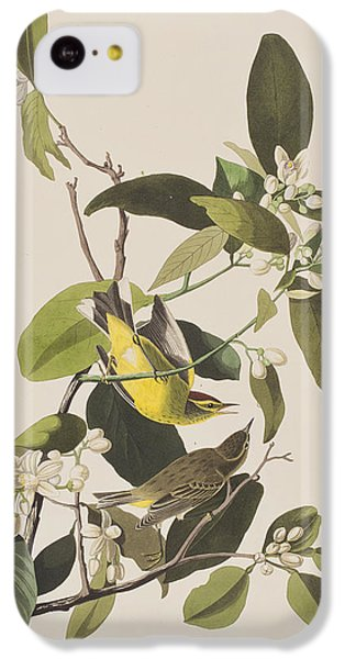 Palm Warbler IPhone 5c Case
