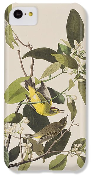Palm Warbler IPhone 5c Case by John James Audubon