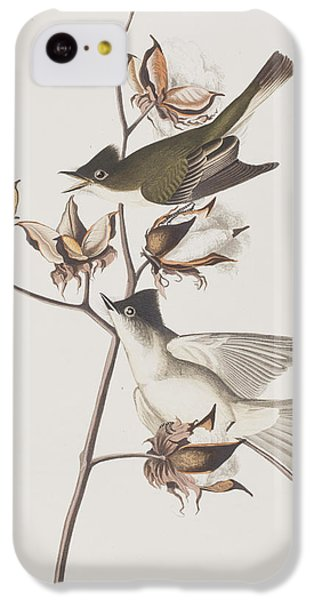 Flycatcher iPhone 5c Case - Pewit Flycatcher by John James Audubon