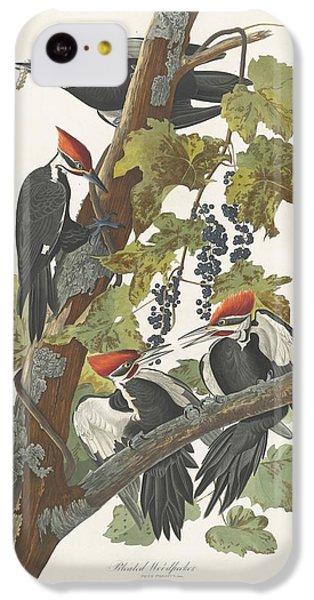 Pileated Woodpecker IPhone 5c Case by John James Audubon