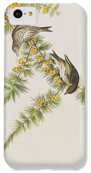 Pine Finch IPhone 5c Case by John James Audubon