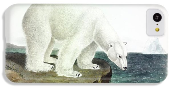 Brown Bear iPhone 5c Case - Polar Bear by John James Audubon