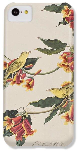 Rathbone Warbler IPhone 5c Case
