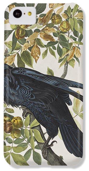 Raven IPhone 5c Case by John James Audubon