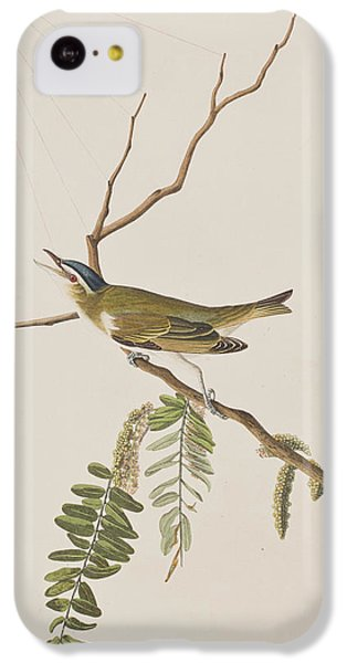 Red Eyed Vireo IPhone 5c Case