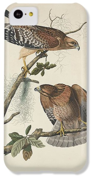 Red Shouldered Hawk IPhone 5c Case by Anton Oreshkin