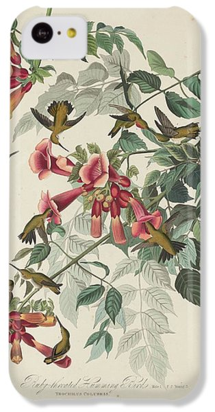Ruby-throated Hummingbird IPhone 5c Case