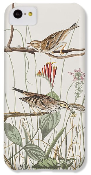 Savannah Finch IPhone 5c Case by John James Audubon