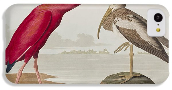 Scarlet Ibis IPhone 5c Case by John James Audubon