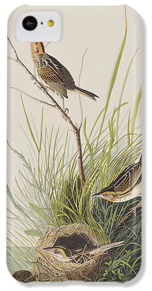 Sharp Tailed Finch IPhone 5c Case by John James Audubon