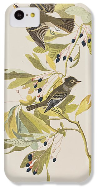 Flycatcher iPhone 5c Case - Small Green Crested Flycatcher by John James Audubon