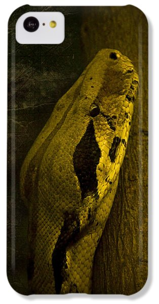 Snake IPhone 5c Case by Svetlana Sewell