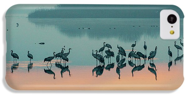 Sunrise Over The Hula Valley IPhone 5c Case