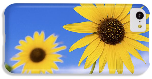Sunflower iPhone 5c Case - Sunshine by Chad Dutson