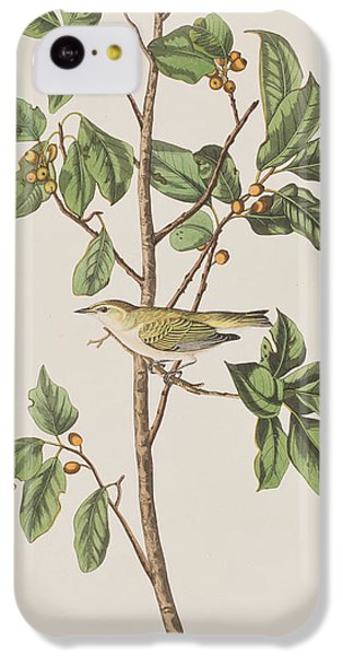 Tennessee Warbler IPhone 5c Case by John James Audubon